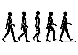 Những lợi ích vô giá từ việc thực hành đi bộ Images?q=tbn:f78yWoj2IRflBM