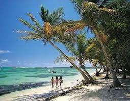 question pour les profs expat', dans les DOM-TOM et autres destinations sous mandat français Martinique_plage