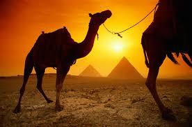 external image egypt.jpg