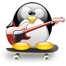 Penguin Skate Online