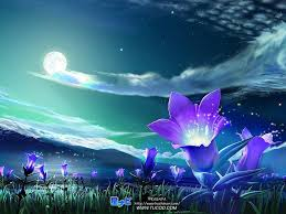 Spánok - spíte dobre? Beautiful-night2