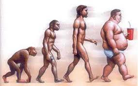 evoluzione1 Ci siamo veramente evoluti dalle scimmie? Trilogia di incontri a Cavalese.