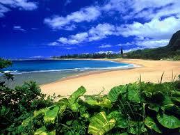 Hawaii Writers Groups