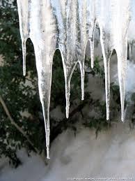 Ледникът