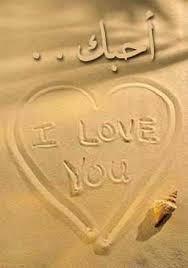 >,.-~*'¨¯¨'*•~-.¸-(_ أحبــــــsــــــbــــك) _)-,.-~*'¨¯¨'*•~-.¸ love_card_b.jpg