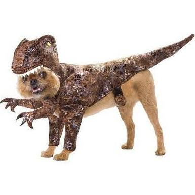 Animal Planet Raptor Halloween Dog Costume