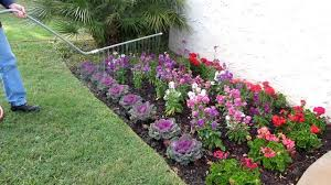 Flowers For Flower Beds by How To Water Beautiful Flower Beds Youtube