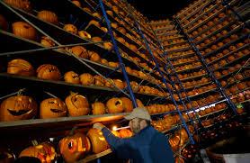 Pumpkin Fest Highwood by Enjoying The Art Of Pumpkin Carving