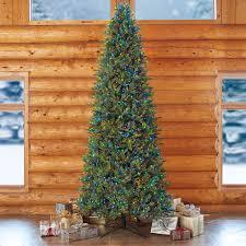 Puleo Christmas Tree Instructions by Aspen 12ft 3 7 M Pre Lit 1 350 Led Dual Colour Artificial