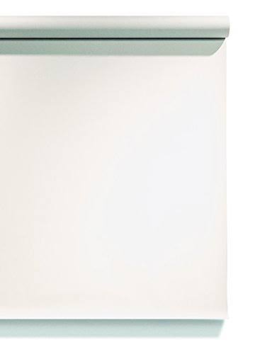Superior Specialties Photography Backdrop Photographic Paper, Arctic White (112093)