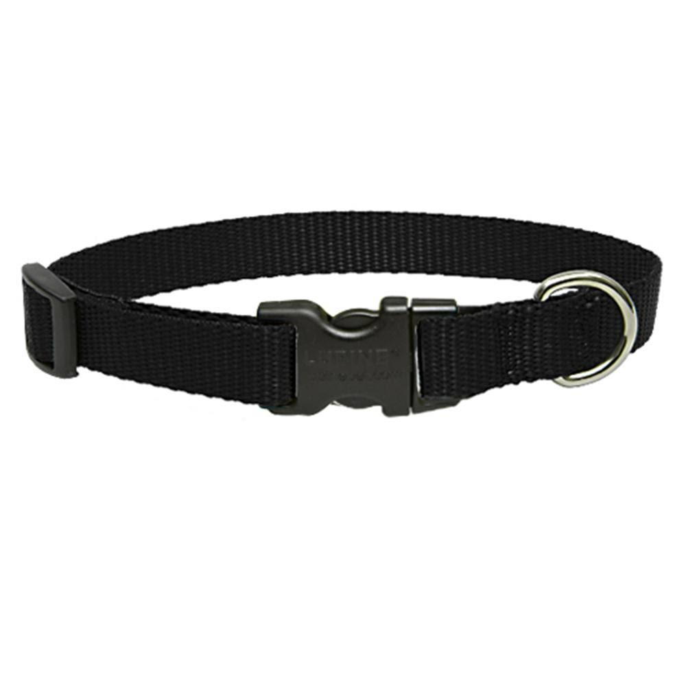 Lupine Dog Collar Black 12-20""