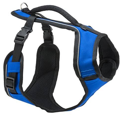PetSafe Easy Sport Dog Harness - Large, Royal Blue