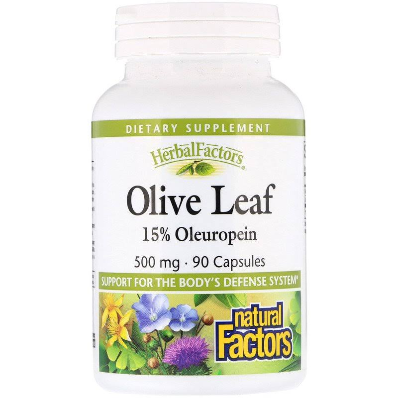 Natural Factors Olive Leaf Extract - 500mg, 90 Capsules