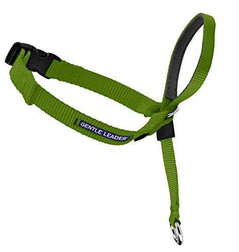 PetSafe Gentle Leader Head Collar - Medium, Apple