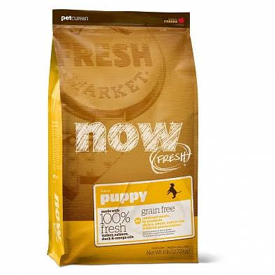 Now Fresh Grain Free Puppy Dog Food - 12lb