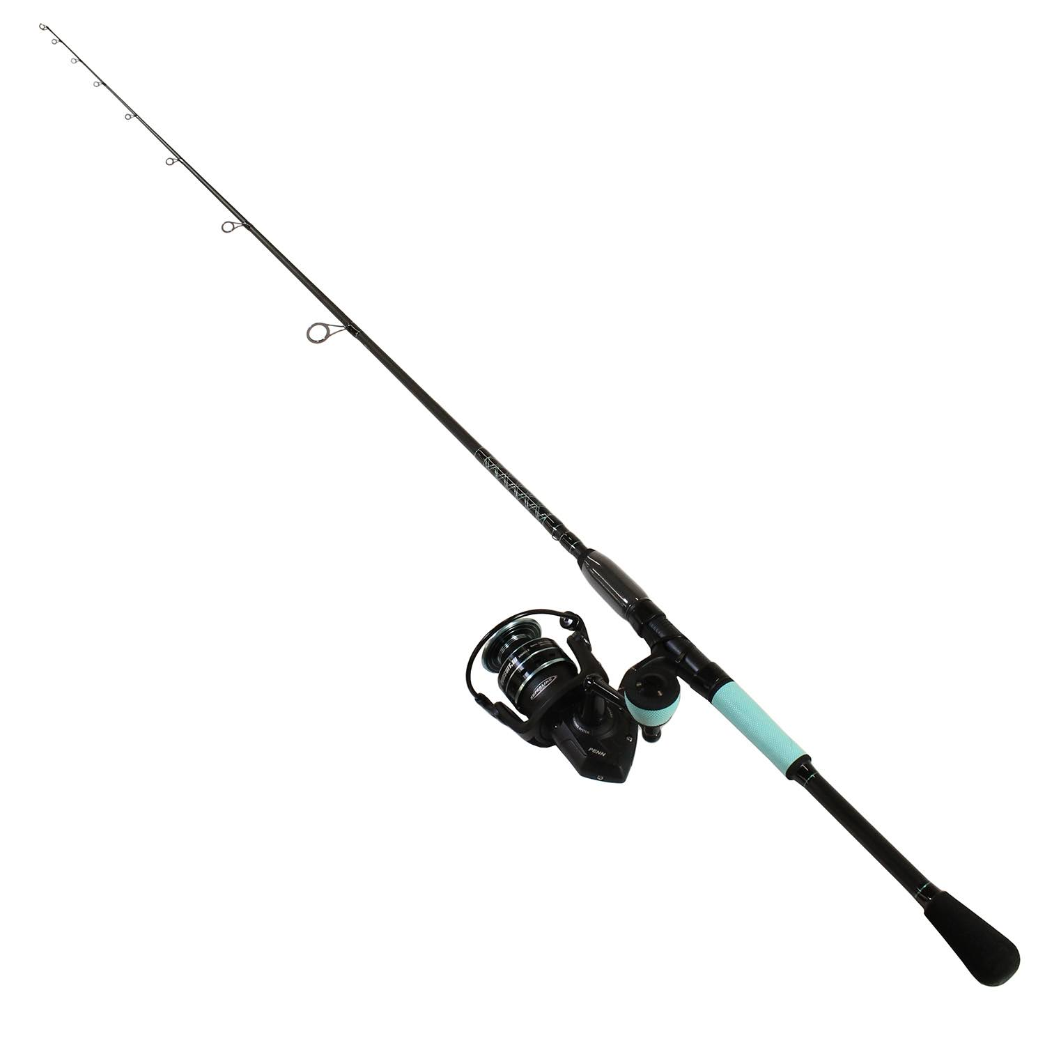 Penn Pursuit III Le Spinning Combo