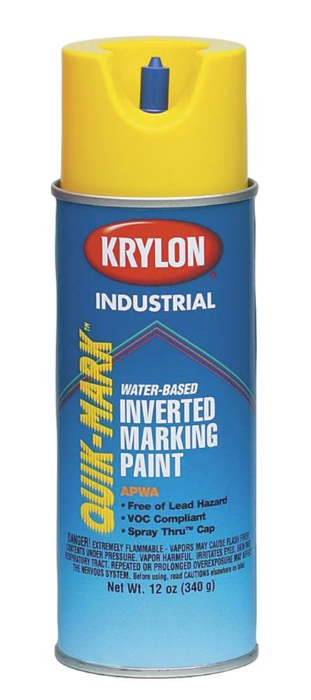 Krylon Metallic Spray Paint - Silver