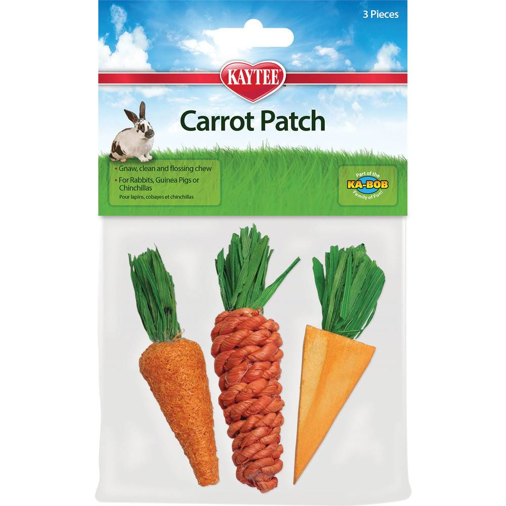 Kaytee Carrot Patch Small Pet Chew Toys - 3 Pack