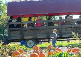 Pumpkin Patch Near Clovis Ca by Triple B Farms Country Market Berry Picking Family Playground