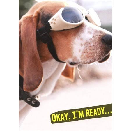 Recycled Paper Greetings Dog in Goggles Ready Funny / Humorous Birthday Card
