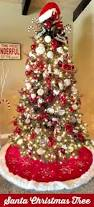 Christmas Tree Species Name by Best 25 Buckeye Tree Ideas On Pinterest Buckeye Crafts The