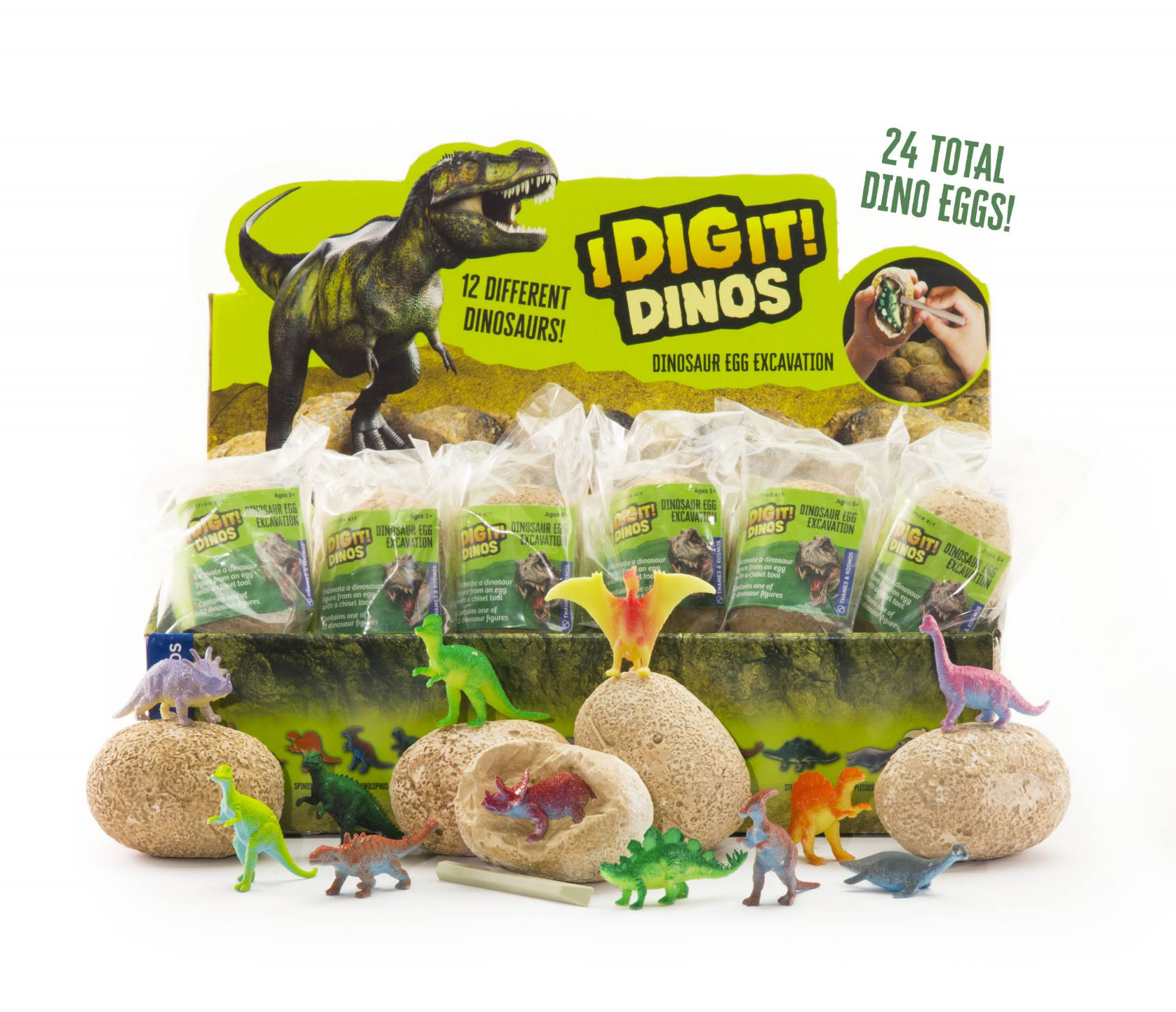 Thames & Kosmos I Dig It Dinos! - Dino Egg (24 Unit Display)
