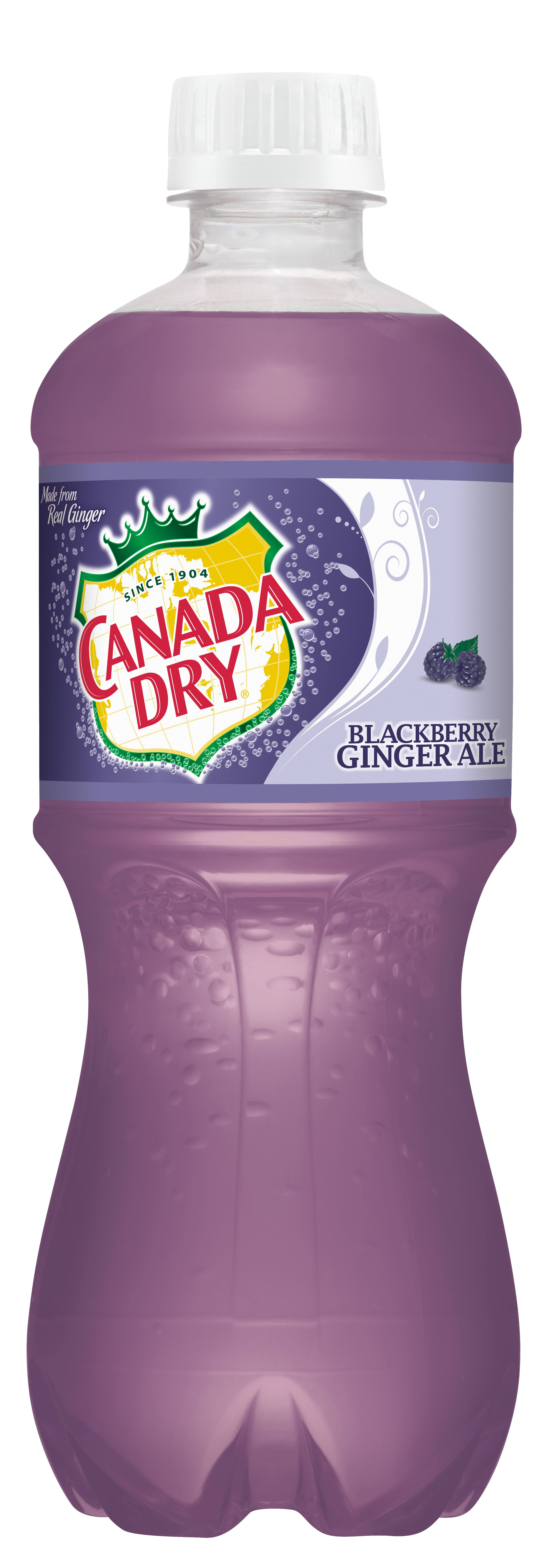 Canada Dry Blackberry Ginger Ale - 20 fl oz bottle