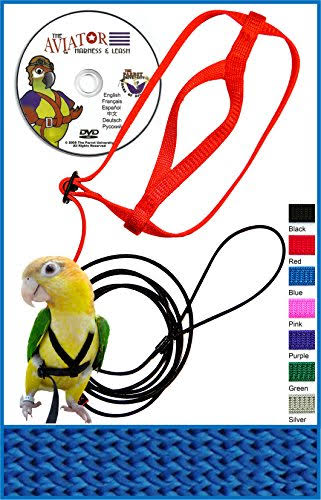The Aviator Pet Bird Harness and Leash Petite Blue