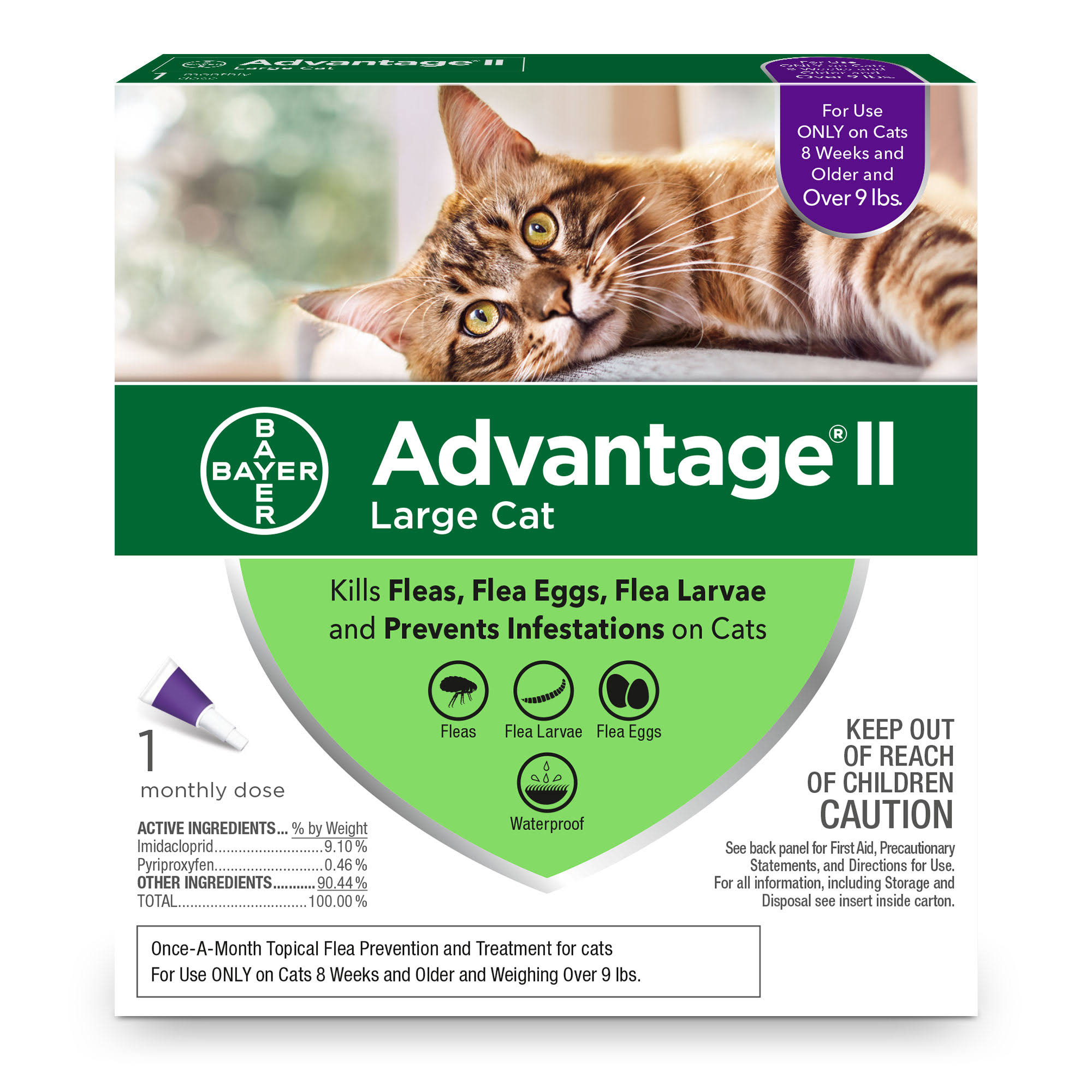 Advantage II Large Cat - 1 Month Dose