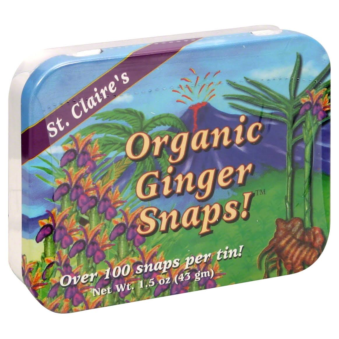 St. Claire's Ginger Pastilles Herbal Sweets - 1.5oz