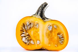 Are Pumpkin Seeds Called Pepitas by How To Cook Pumpkin Seeds Tasting Table