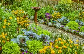 Flowers For Flower Beds by Master Gardener Add Vegetables To Your Flower Beds For Edible
