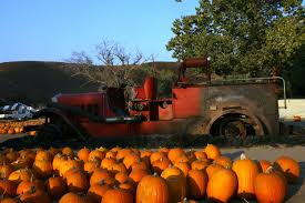 Southwest Ohio Pumpkin Patches by Top 10 Things You Must Do During Fall K Frog 95 1 Fm And 92 9 Fm