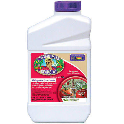 Bonide Captain Jack's Dead Bug Brew Insect Spray Concentrate - 1qt