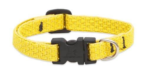 "LupinePet Eco Sunshine Dog Collar 1/2"" Wide by 10""-16"""