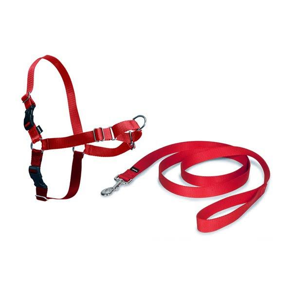 PetSafe Easy Walk Harness (Small, Red)