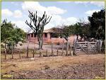 imagem de Ribeira do Piauí Piauí n-21