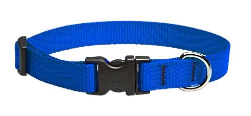 "Lupine Adjustable Dog Collar - Blue, 3/4"" X 13"" to 22"""