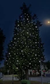 Blinking Christmas Tree Lights Gif by Tree Lights Gif Gifs Show More Gifs