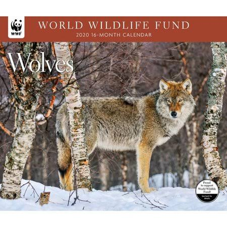 Calendar Ink 2020 Wolves World Wildlife Fund Wall Calendars