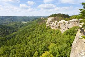 Red River Gorge Geological Area Landscaping & Tree Service