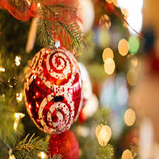 Christmas Tree Has Aphids by Holiday Fun Archives Home Of Absolute Pest Control