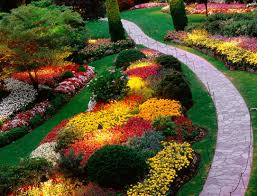 Flowers For Flower Beds by Home Flower Garden Designs Decorating Clear