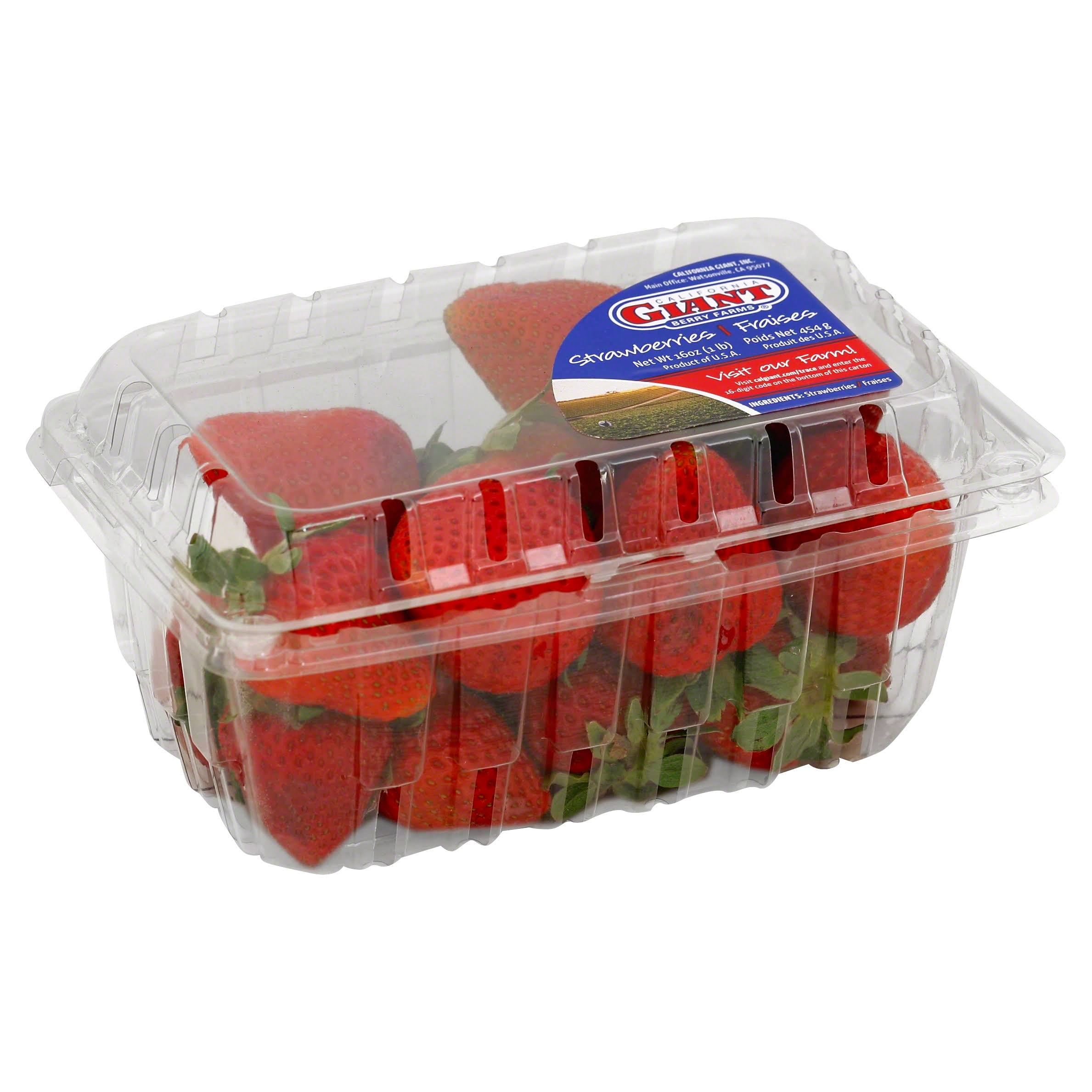 California Giant Berry Farms Strawberries - 16 oz