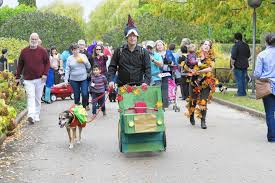 Pumpkin Fest Highwood by Say Boo Your Guide To 2017 Halloween Fun Northbrook Star
