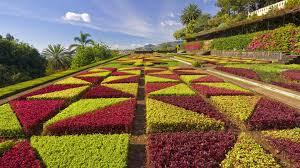 Flowers For Flower Beds by Garden Flowers Wallpaper