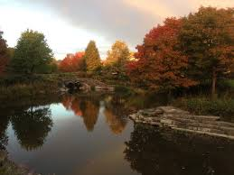 Pumpkin Fest Highwood by Fort Sheridan Why Choose It For Your Next Home U2014 The Town Of