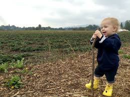 Pumpkin Patch North Bend Oregon by Outings With A Toddler U0026 Newborn