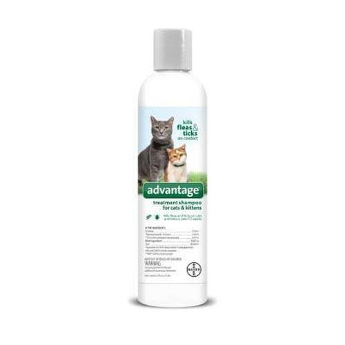 Bayer Advantage Treatment Shampoo for Cats and Kittens - 8oz