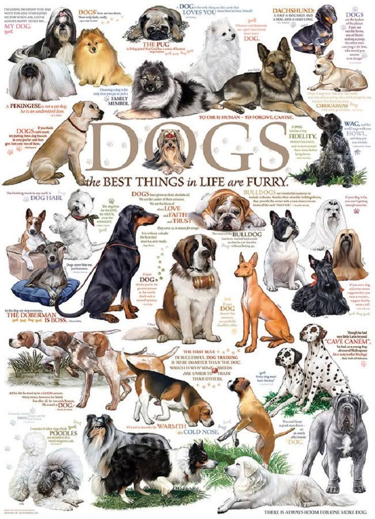 Cobble Hill Dog Quotes 1000 Piece Jigsaw Puzzle